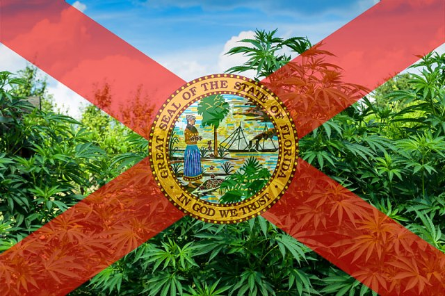 Florida Medical Cannabis: New Patient's Guide to Discounts (Updated