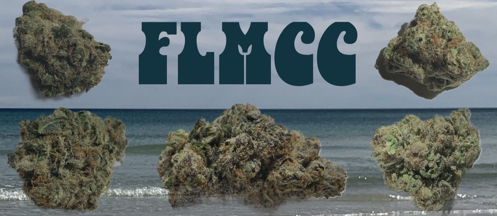 Florida Medical Cannabis Collective